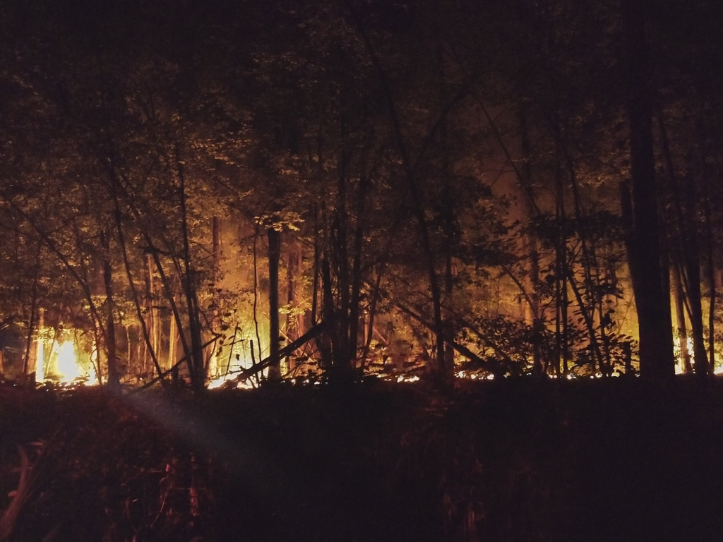 Night image of Jacksonville wildfire.