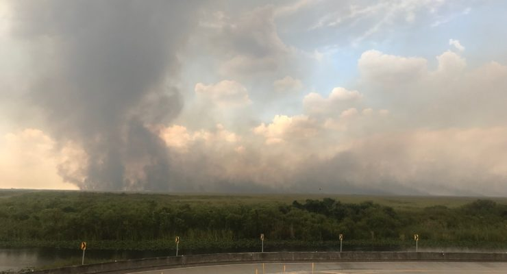 Photograph of smoke from the Sawgrass wildfire. Image courtesy of the Florida Forest Service.
