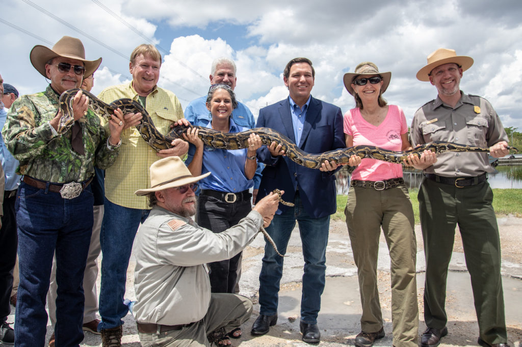 Governor Ron DeSantis makes announcement about python removal efforts in the Everglades.