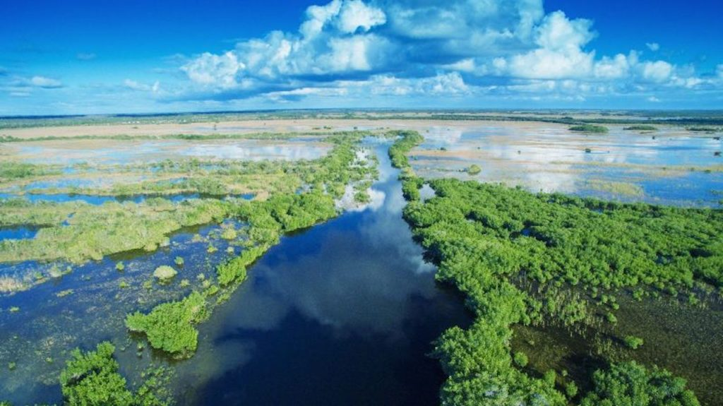 Aerial photograph of the Everglades on a sunny day with blue sky and white clouds.
